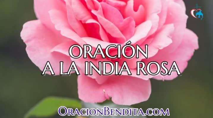 Oración a la india rosa para enamorar