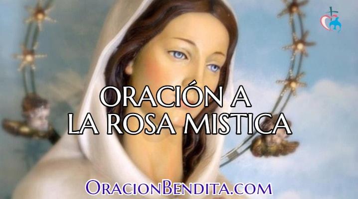 Oración a la Rosa Mística