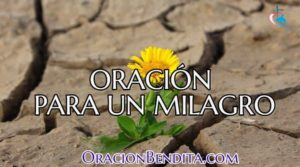 Oración Para Un Milagro: Salud, Amor, Económico y Más