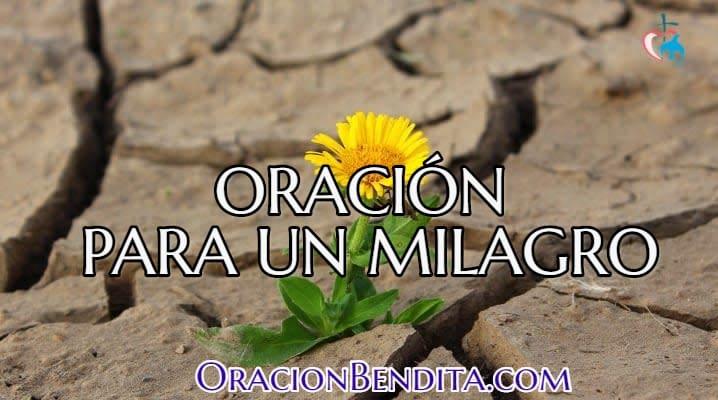 Oración para un milagro en el amor